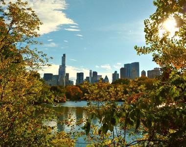 Visiter les États-Unis en amoureux : trois activités à faire