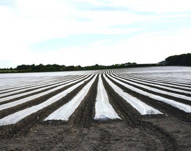 Bâche agricole: utilité et choix